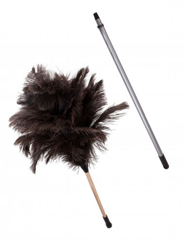 Extended feather duster