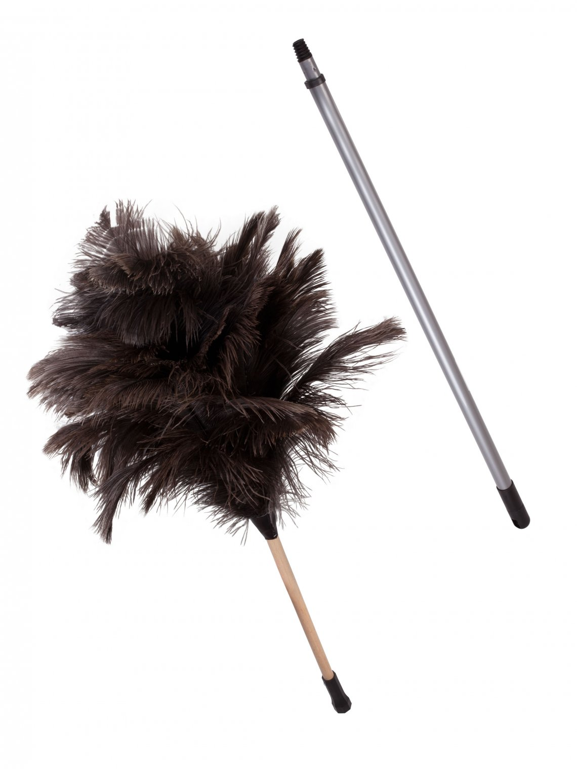 Ostrich Feather Duster The Blind Shop